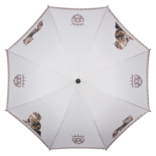 Automatic umbrella Tigered Cats