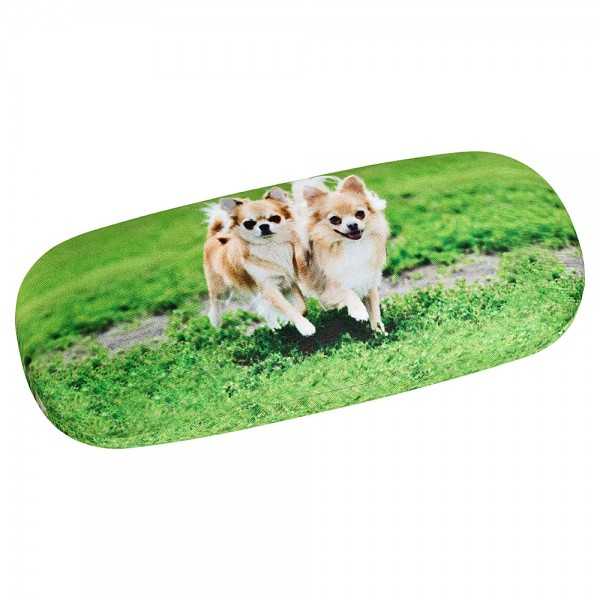 Brillenetui  Hardcase Motiv Hund Chihuahuas
