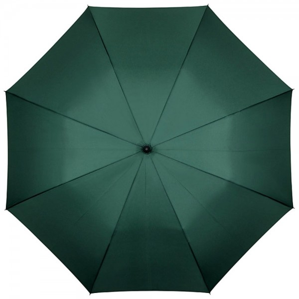 Automatic Umbrella Leo, green