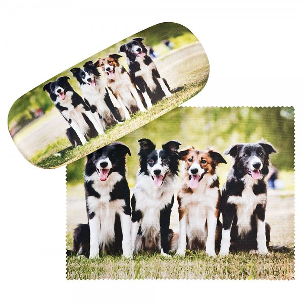 Glasses case Border Collies