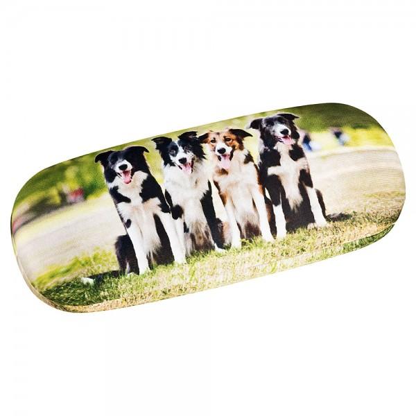 Brillenetui  Hardcase Motiv Hund Geschenk Border Collies